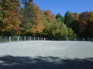 outdoor-arena-fall-web