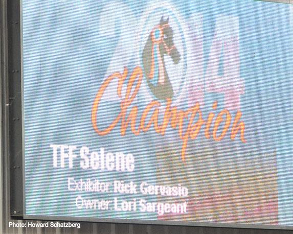 TFF Selene